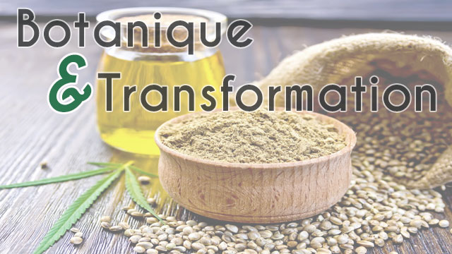 Botanique & Transformation