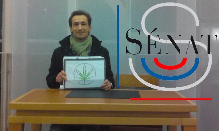 FRANCE : Le Sénat propose la légalisation !