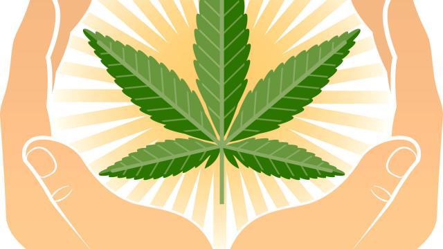 Presse. Le mouvement pour le cannabis médical gagne de l'importance en Europe