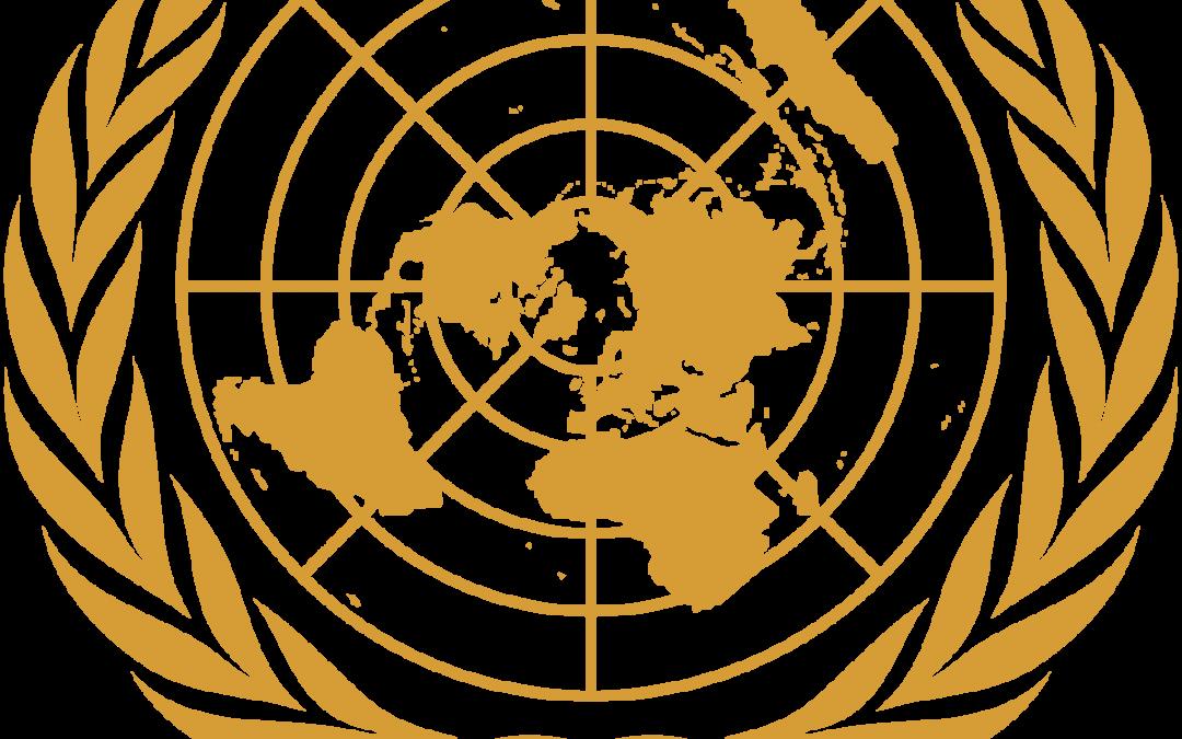 Logo d el'ONU