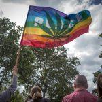 Pace Drapeau Marche Mondiale Cannabis