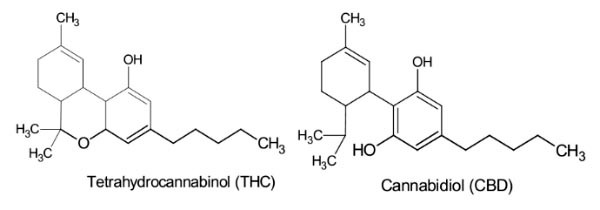 Molecules de THC & CBD