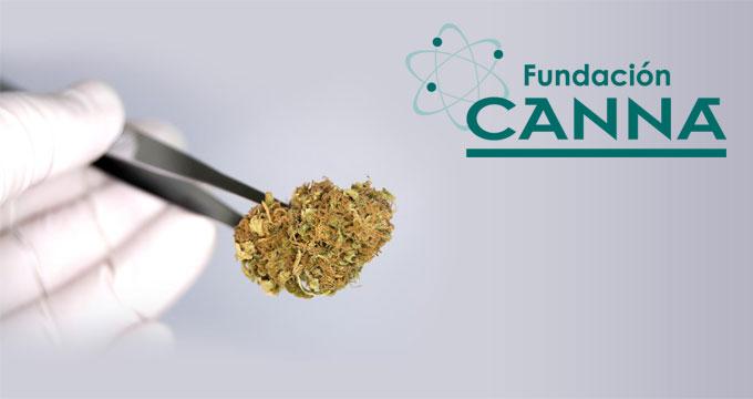 Analyse HPLC de cannabinoïdes en partenariat avec la Fondation CANNA