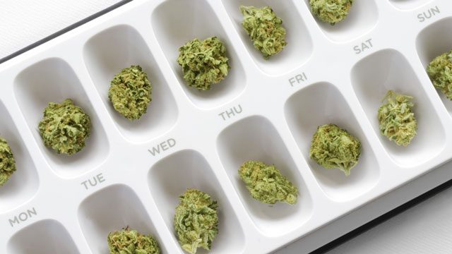 Pillulier Phyto-Cannabinoïdes