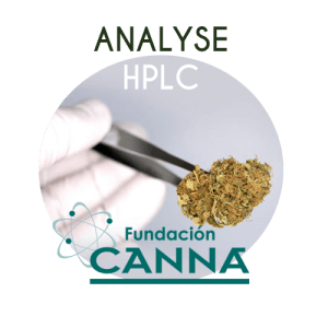 Analyse HPLC chez CANNA Fondation