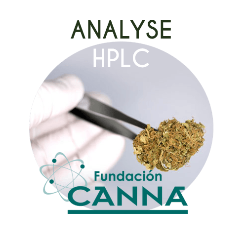Analyse HPLC chez CANNA Fondation