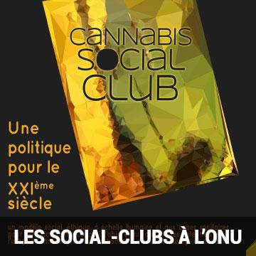 Présentation du modèle des Cannabis Social Club à l'ONU