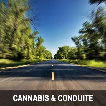 Cannabis & Conduite Automobile