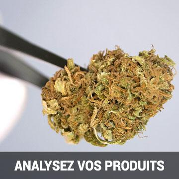 Analyse de cannabinoïdes avec la Fondation Canna