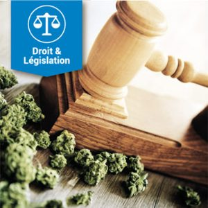 Droit & Législation
