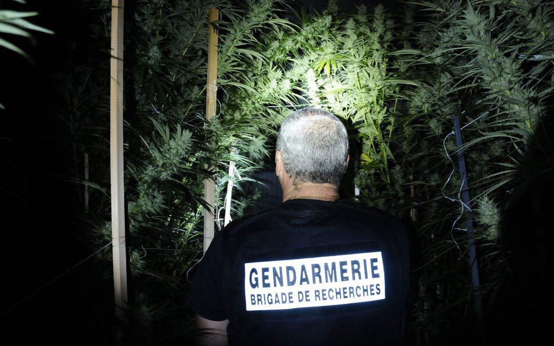 Lettre ouverte d'un gendarme au Président Macron, pour une réforme des lois sur les stupéfiants