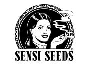 Banque de graines de cannabis de qualité