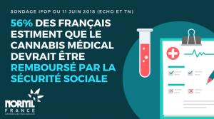 56 % des Français sont pour un cannabis médical remboursé