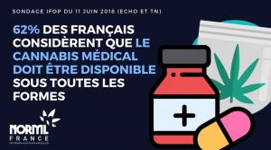 62% des Français pour le Cannabis médical disponible sous toutes ses formes