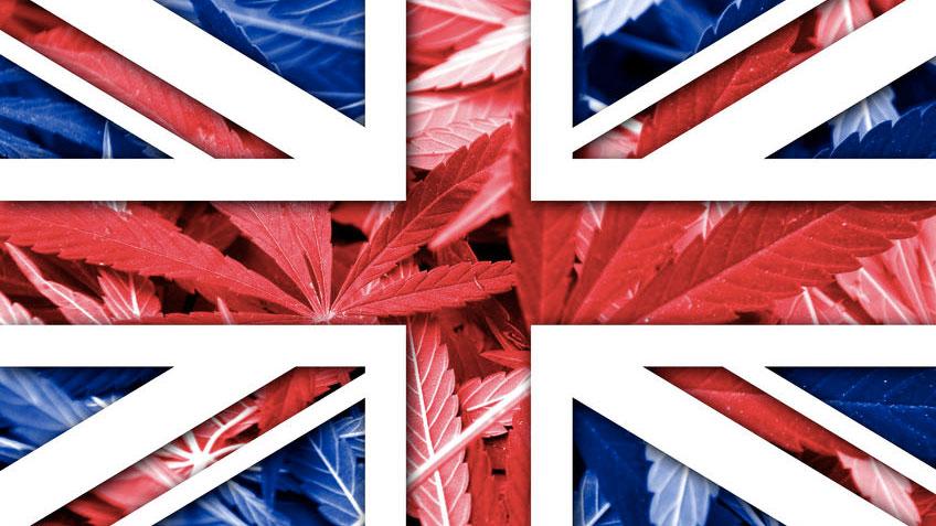 Royaume-Uni: Le gouvernement passe au cannabis médical