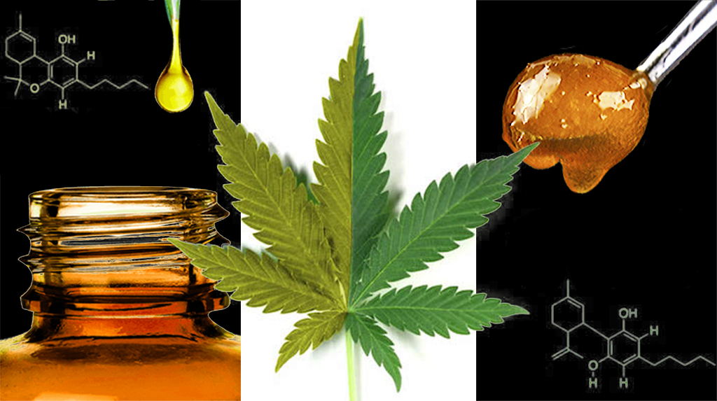Note de synthèse : cannabis, les nouveaux produits émergents