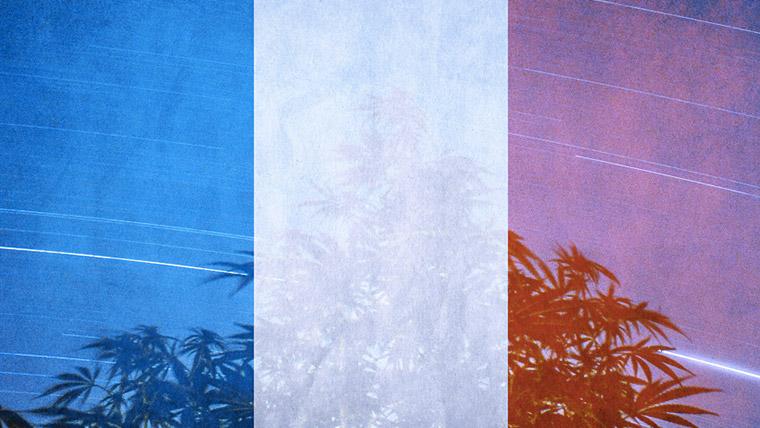 La France passera-t-elle le cap de la légalisation avant le 31 décembre 2020? Etat des lieux et positions de NORML France.