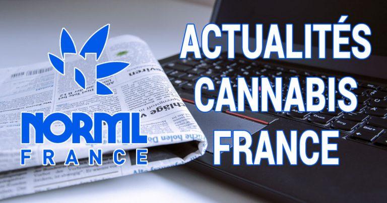 Actualités Cannabis France