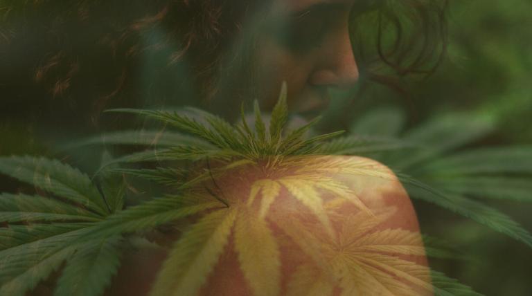 Le système endocannabinoïde et notre peau