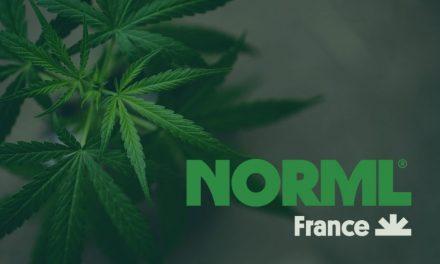 Les recommandations de NORML France à la Mission d'Information Cannabis de l'Assemblée Nationale