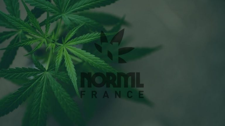 Note MICANNABIS NORML-France